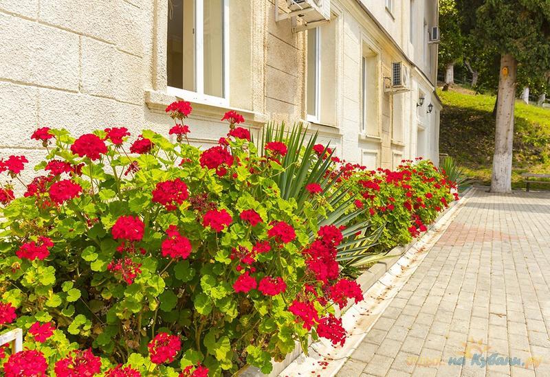 Гостиница Репруа (Холодная речка), Абхазия, Гагра, Холодная речка ... | 549x800